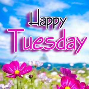 Happy Tuesday Images & Quotes 2