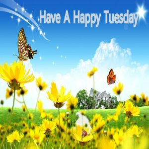 Happy Tuesday Images & Quotes 3