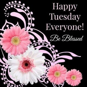 Happy Tuesday Images & Quotes 4