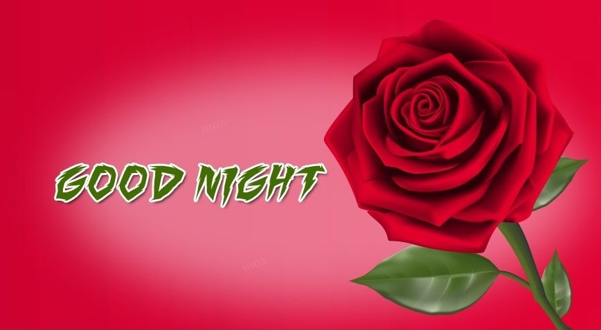Beautiful Good Night Messages 3