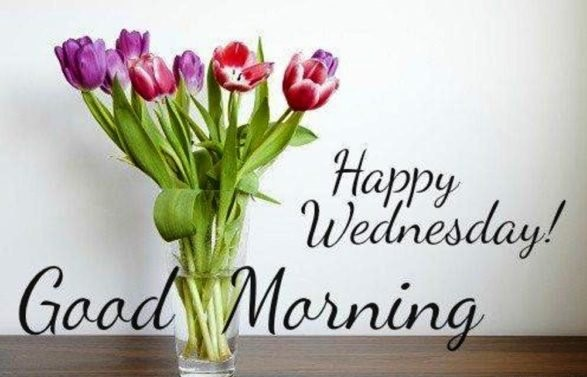 Happy Wednesday Quotes & Wallpaper 2