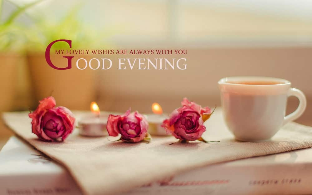 Lovely Good Evening Message
