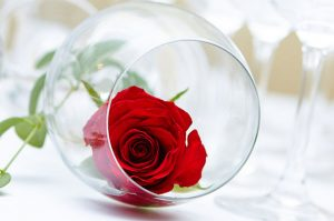 Rose Day SMS Messages &Images 2