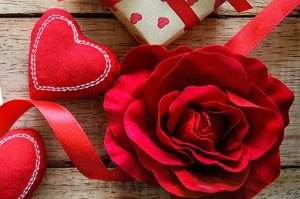 Rose Day SMS Messages &Images 3