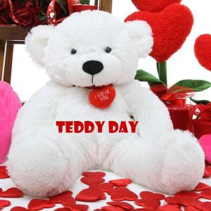 happy teddy day wishes images