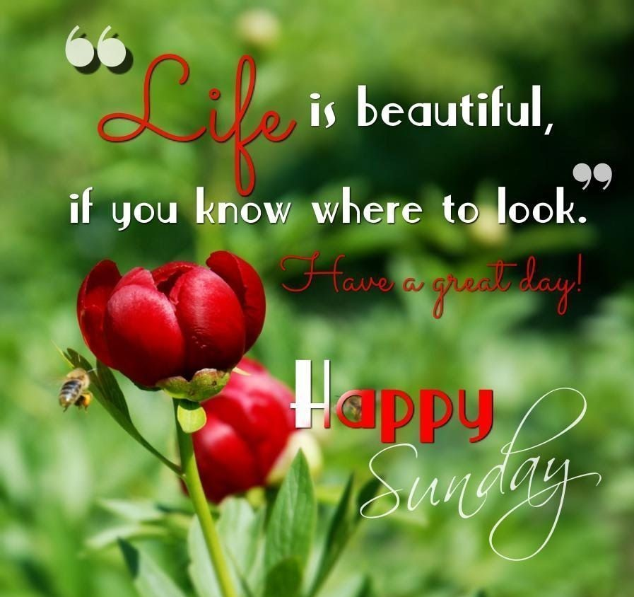 Happy Sunday Quotes & Images 3