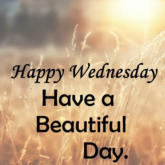 Happy Wednesday Morning  Images   2