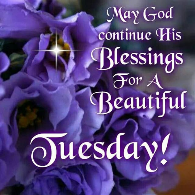 Happy Tuesday Pics And Quotes 2