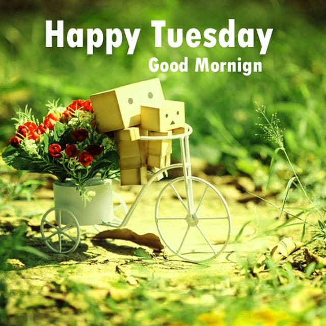Happy Tuesday Wishes Images 2