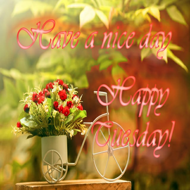 Happy Tuesday Wishes Images 3