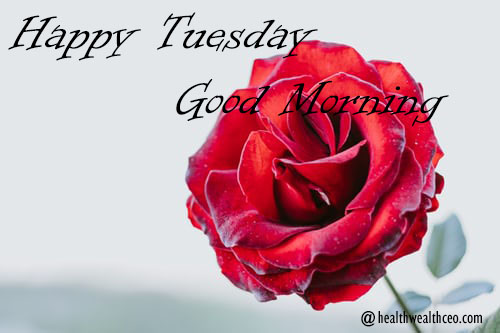 """Good Morning Tuesday Wishes Quotes 3"