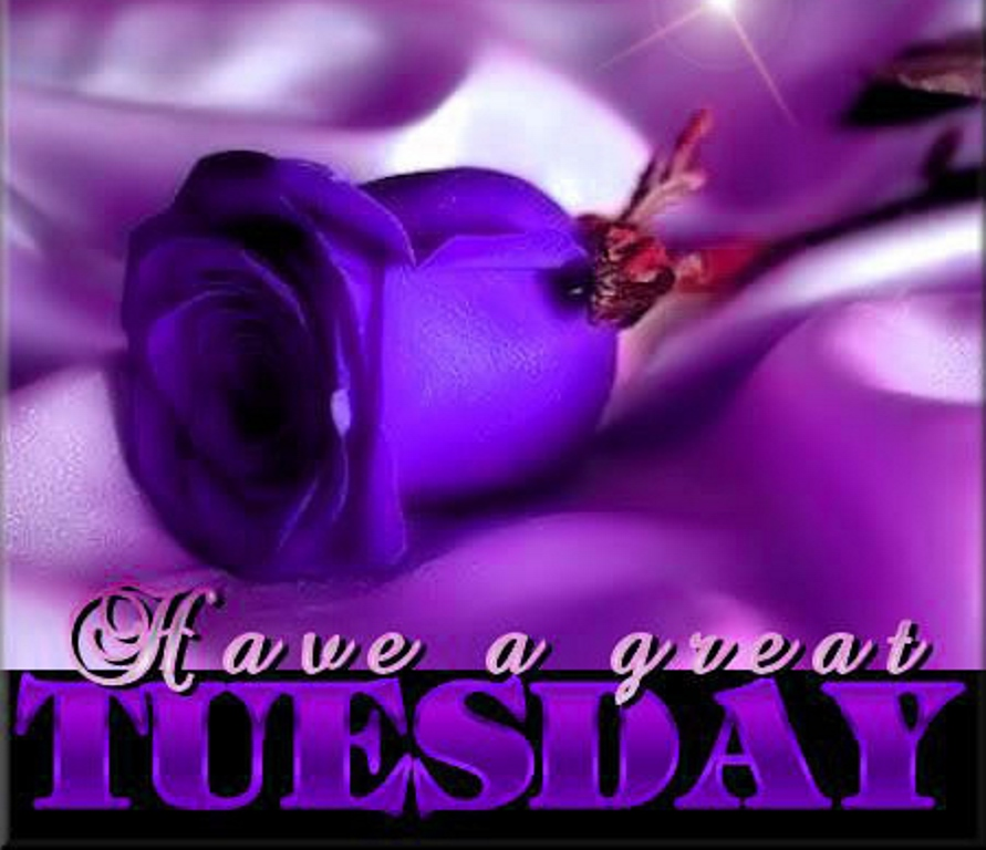 Happy Tuesday Images and Quotes