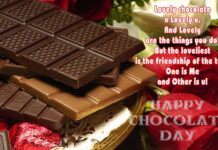 Happy Chocolate Day Wishes Quotes