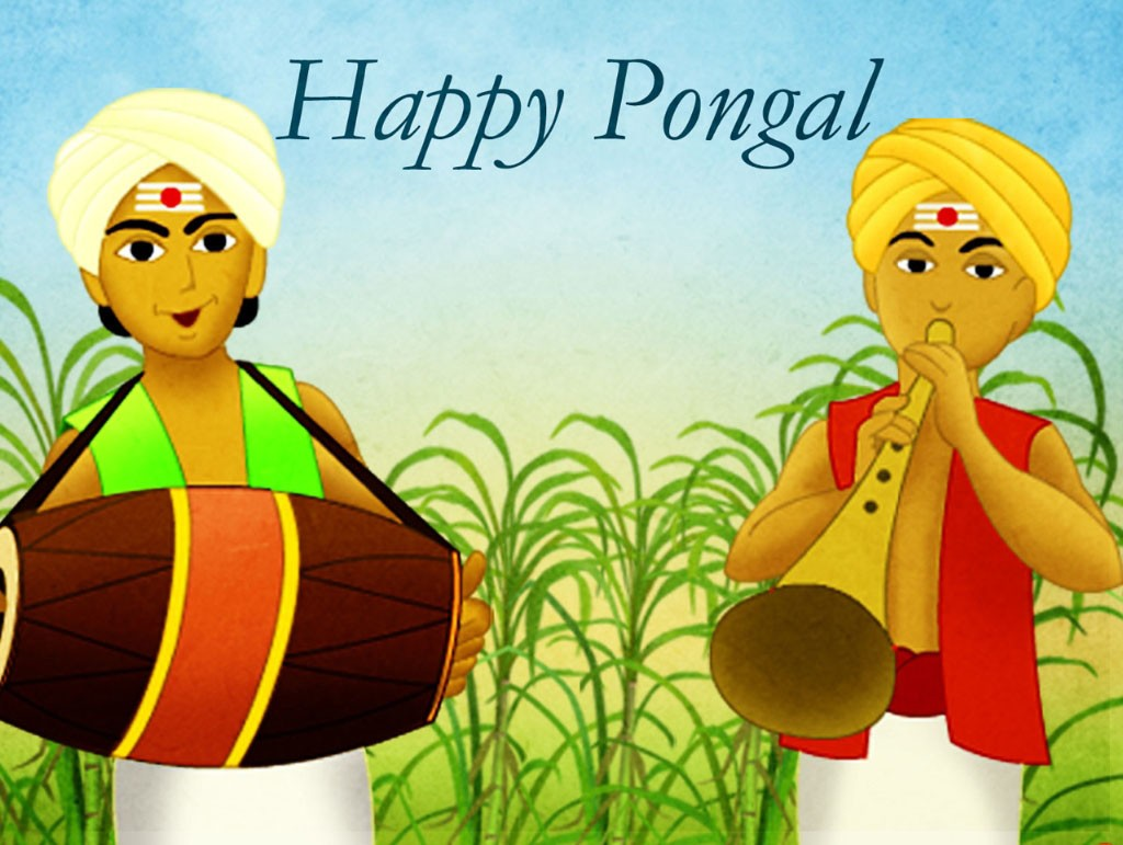 Pongal Festival Images Wallpapers 3