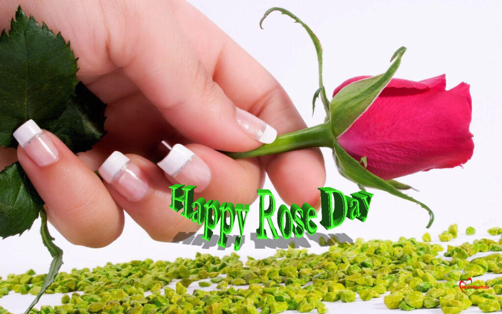 Rose Day Message for Wife 2