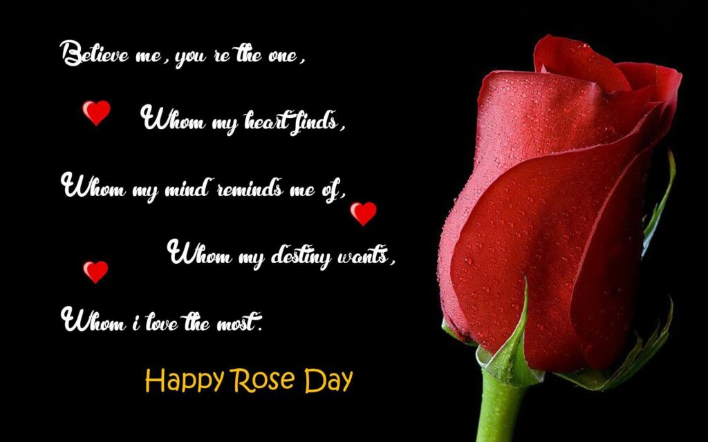 Rose Day Wishes for Him 2