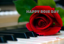 Rose Day Wishes for Him
