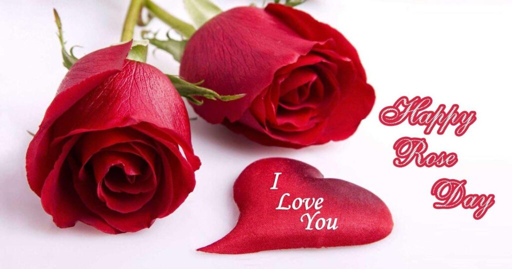 Wishing Rose Day Quotes