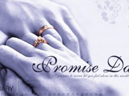 Promise Day Quotes for Girlfriend