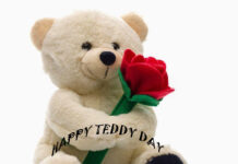 Teddy Day Wishes for Boyfriend